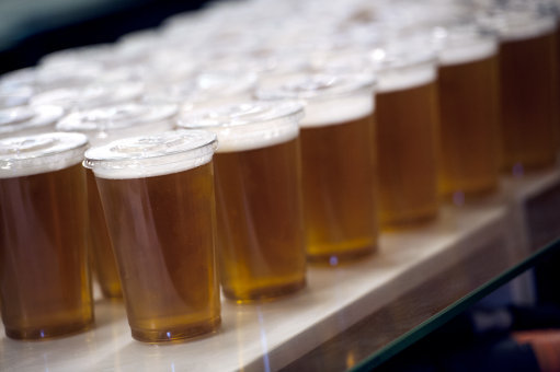 Pints of Lager are lined up waiting to be served to fans